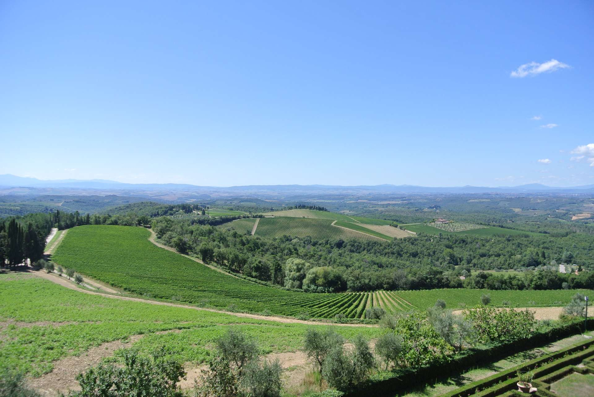 View from Brolio