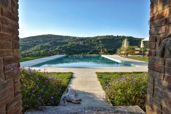 Agriturismi_piscina_Val d'Orcia_Toscana_luxury