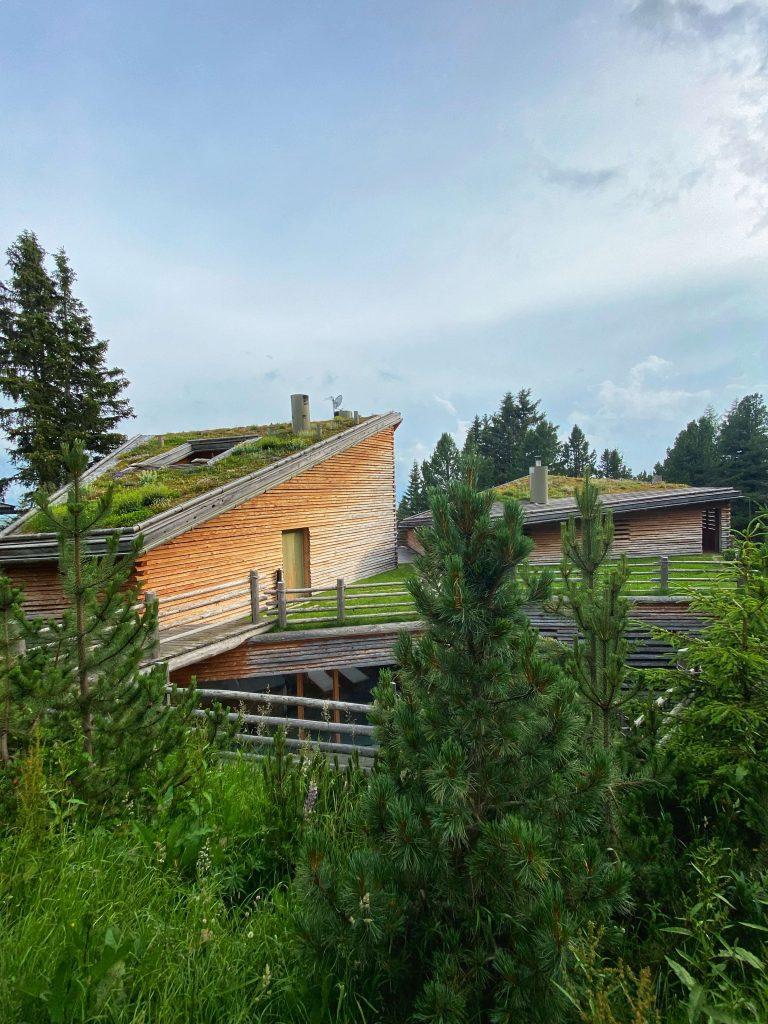 Odles-Lodge_chalet-lusso-bosco-plose